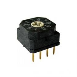 BCD Rotary Dip Switch